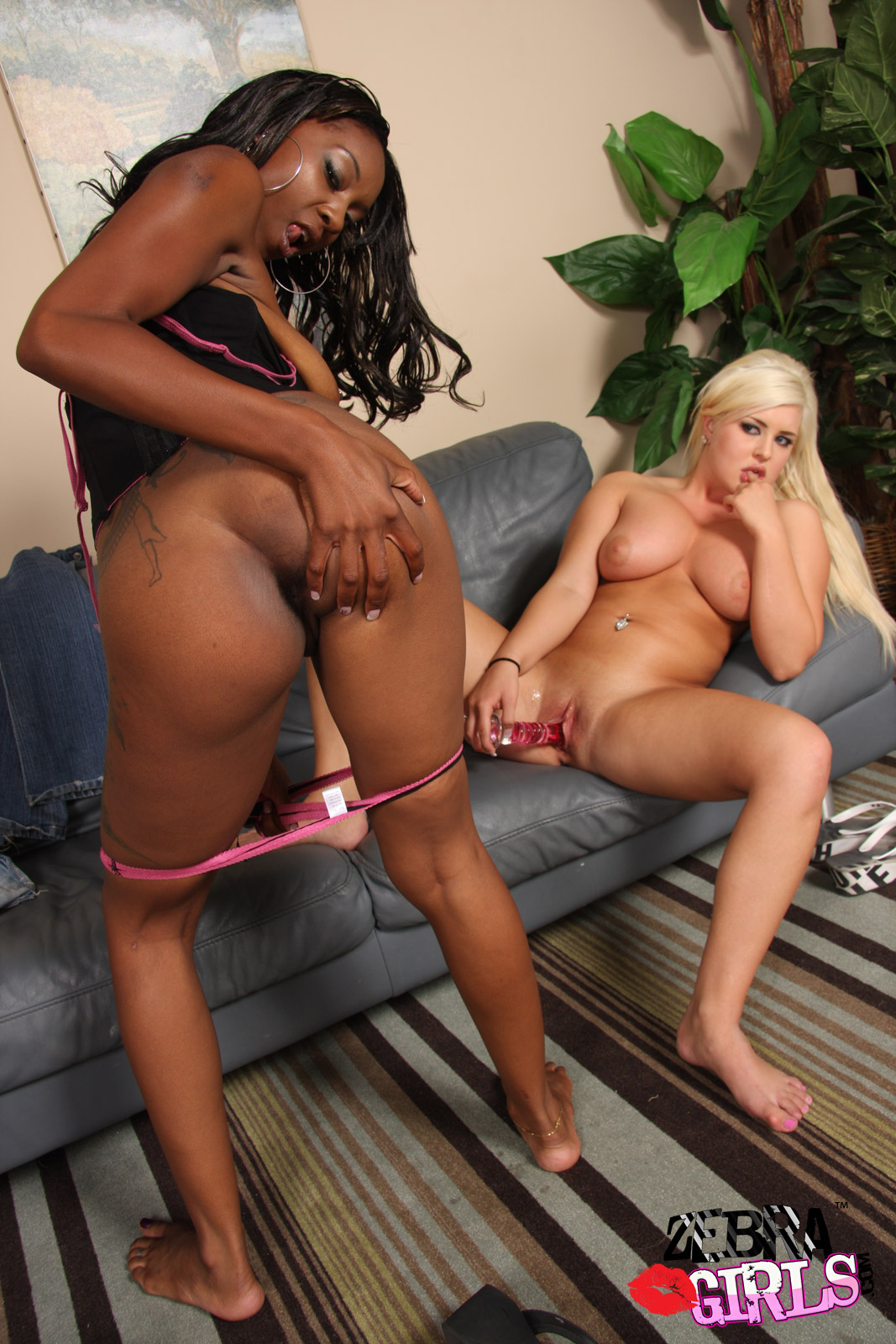 Sexy! Love interacial lesbian web sites sexy. How can